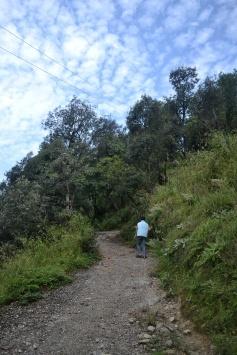 Our little trek