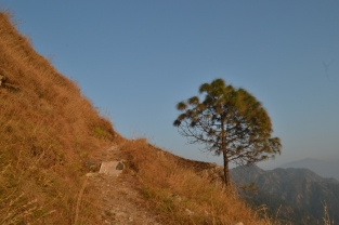 Uphill, where time stood still, Ramnagar, Uttarakhand